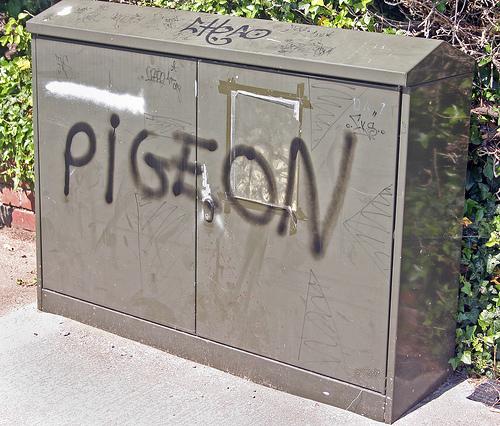 funny-graffiti-pigeon